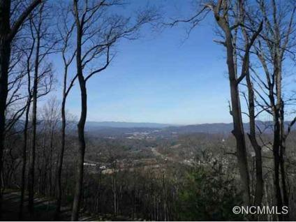 $265,000 The premiere lot on Chestnut Mountain!!! End of road privacy!!!
