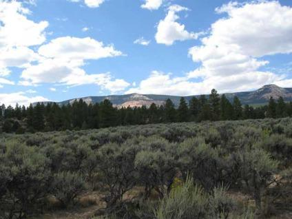 $300,000 Beautiful 125 Acre parcel of land with great views of upper valley & pink point.
