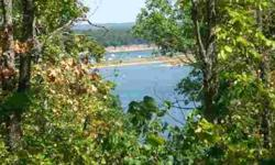 If you are looking for an affordable Bull Shoals Lake lot, check it off your list. Lot will offer year round lake view with clearing. City water is in and just need shooked up. City sewer will need to be brought to property, but is pretty close to