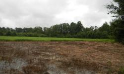 9.5 Acres of Land, most of it already cleared for that new dream home of your choice. This could be your new home site in a matter of days.