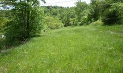 Cleared Lot in Nice Subdivision close to Branson yet out away from traffic where you see the lake and launch your boat just a golf cart away. Community Water available at lot line.