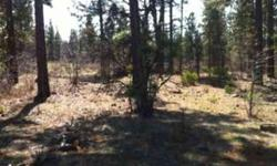 Burney falls estates - a beautiful land subdivision 3 mis from burney, and about fifteen minutes from burney falls, lake britton, hat creek, baum lake, fall river, golf course, airport!