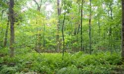 30 acres currently in Chapter 61 with 325 foot frontage is a rolling wooded lot with potential for estate lot. Price includes a separate additional 1.25 acre lot with an intermittent water brook. Buyer to do own due diligence to obtain own permits.