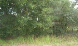 Nice Country living! Almost 5 acres nestled on a secluded country street. Plenty of privacy and natural beauty. three acres towards the front of property are high and dry. Back two acres back up to the lake.Listing originally posted at http