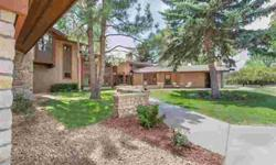 This breathtaking home will impress you with its attention to detail and pristine condition! The homes has the feel of a private Mountain setting in a wonderfully quiet, convenient, and friendly neighborhood. Grand two story great room,amazing imported