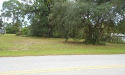 Vacant land measures approx. 100 x 550 or 1.25 acres. The front 100 is on paved road right off of SR 44 East of EUSTIS in Pine Lakes. There is electric service and a working well on property, and septic service. Also, a single wide trailer, but it is of