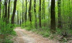 Loudoun County - not quite CLARKE COUNTY - beautifully wooded 10+/-acres with private drive off BLUERIDGE MOUNTAIN ROAD. Approved 4 Bedroom Perc. Ideal location, just off 50 and 17, to build a dream house, weekend cabin, hunt box or your very own