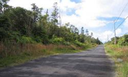 Very nice side by side two acre parcels with native ohia trees, in fern acres near mt view.