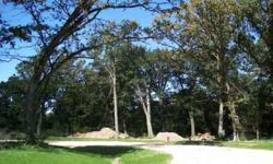 Bank Owned! Beautiful .84 acre wooded lot is perfect for your dream home in this area of custom homes. Bring your own builder or wait till the market comes back & see what a great investment this is! Beautiful 950 acre state park & forest preserve