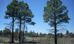 These lots have power and water available. Buyer to verify the utilities as well as flood plain details. Listing originally posted at http