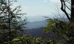 10 Acres - Year round West-Southwest views at 3500` elevation. Within FAIRVIEW FOREST a private secluded 700+ acre community which now neighbors The Cliffs at High Carolina. Mountain laurels, rhododendrons & native birds. Sub-dividing potential! Rare