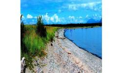 This has to be one of the nicest lakefront lots available. LAKE ILIAMNA FRONTAGE !! This is a very rare opportunity to own lakefront at a great price. Perfect lodge or fish camp location. World class fishing from your own land. Owner financing with large