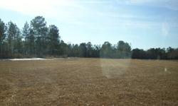 7.5 Acres of land for sale in Pamplico, SC. For sale by owner. 5 acres cleared, 2.5 wooded. Off of a dirt road in the country. Surrounded by woods and field. Does not have septic tank or well, but has been perk tested and passed in 2 spots on the land (so