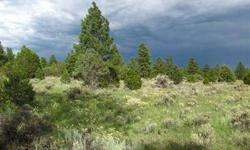 Timberlake Ranch- Perfect get away to camp or build a home in the meadows or trees. There are two properties next to each other with wonderful views of red bluffs and national forest. The lots are side by side, can be sold separately but naturally go