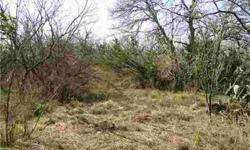 Lot can be sold with an adjoining 3.607 acres for a total of 7.214 acres. This lot is directly behind accompanying lot that fronts Carter Rd. The price of both lots are $62,900. For Sale sign on front adjoining lot.