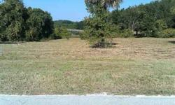 Nice one acre lot on EEldorado LakeDR. Peaceful, tranquil & quiet country living. Easy access to SR44. Approx 4 miles from US441 & less than 30 minutes to Seminole Town Center.Less than an hour from Disney & Florida's beaches. Great views & no deed