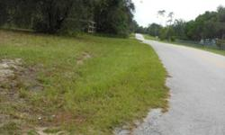 """1.25 Acres for Sale. East of Eustis right off of Hwy 44, Pine Hills. 100 X 550. 100 is paved road frontage. Electricity, water and septic are in place. An older single wide mobile home is on property but is of no value and is sold """"AS IS"""". This mobile"""