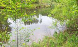This is a great homesite, nice setting, fronts on a lake, close to Richmond and Farmville.Listing originally posted at http