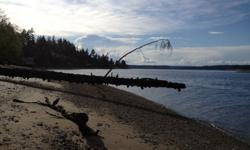 Rare opportunity to own a Historical Property on Anderson Island. 325' of Puget Sound Waterfront land available on the North Shores of Beautiful Anderson island. Come build your dream home on this fabulous 4.4 Acre parcel situated in a beautiful area of