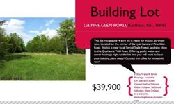This flat rectangular 4 acre lot is ready for you to purchase now. Located on the corner of Barnyak Lane and Pine Glen Road, this lot is near local Sproul State Forest, and also close to the Quehanna Wild Area. Offering public water and sewer hookups