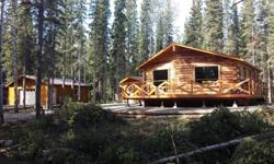 Brand New Construction Alyeska Chalet Log Home with Detached Heated Garage PLUS 2 Rental Cabins on 2.3 acres in Copper Center. Fully Furnished - All New Appliances - Move In Ready! Ideal for B&B or Tour/Guide Businesses - close to many recreational