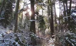 10 Rugged and secluded acres with lots of Timber. Located on the east side of Round Valley. Priced to sell. email (click to respond) Listing originally posted at http