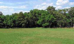 A great level lot with .21 acres ready for you to build your home. Town water and sewer hookup available with fee.Listing originally posted at http