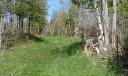 The property has 1/4 mile frontage on fox road, and appears to touch Adventure Creek. Absolutely fantastic deer hunting, the deer winter on the property. Beautiful upland forest with a great trail system throughout the parcel. If you are looking for a