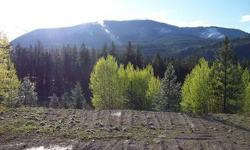 Beautiful views of surrounding mountains, jus t6 miles from Colville! County Rd frontagge for easy access, Meadow, Aspens, views, pasture, trees, property, corners marked, driveway approach with culvvert placed, building site excavated. Water line located