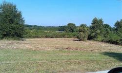 Nice 1.34 lot on E Lake Eldorado DR. Peaceful, tranquil & quiet country living. Easy access to SR44. Approx 4 miles from US441 & less than 30 minutes to Seminole Town Center.Less than an hour from Disney & Florida's beaches. Great views & no deed