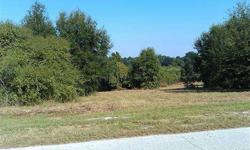 Nice 1.28 lot on EEldorado LakeDR. Peaceful, tranquil & quiet country living. Easy access to SR44. Approx 4 miles from US441 & less than 30 minutes to Seminole Town Center.Less than an hour from Disney & Florida's beaches. Great views & no deed