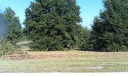 Nice 1.10 acre lot on E Eldorado Lake Dr. Peaceful, tranquil & quiet country living. Easy access to SR44. Approx 4 miles from US441 & less than 30 minutes to Seminole Town Center.Less than an hour from Disney & Florida's beaches. Great views & no deed