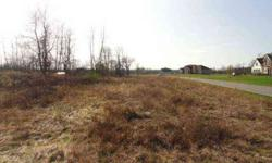 The premo lot to build your dream home. Where can you get 675 feet of frontage? Plenty of room to spread it all around. Be at the entry to one of Parma's high end subdivisions. Listing originally posted at http