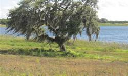 ABSOLUTELY AMAZING, BEAUTIFUL LAKE FRONT LOT WAITING FOR YOUR HOME! Located in Florida's Rolling Hills and Orange Groves in an Esqusive upcoming Upscale Community. Only 30 Minutes from Disney between Orlando and Tampa, This Gated Community Boast of 2