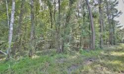 Beautiful wooded lot in Dorchester County School District!! Secluded but still close enough to town!! Public sewer is available and public water should be available soon. Beautiful oak trees on the property!!! 24 hour recorded info on this