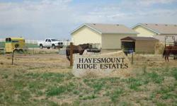 Level 2.698 acres awaits your dream home or quick-set quality modular! Just 5 miles E of I-76 and Bromley Lane (152nd/Brighton) Exit; then a short mile north on Hayesmount and you've arrived at the building site for your new home. Classy Hayesmount Ridge