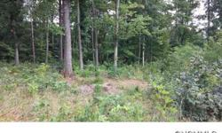 -Very nice gently sloping lot in small subdivision. Partial cleared with 4 beds septic already in place. Neighborhood has only twelve lots, underground utilities, paved roads, and street lights. Assessments to be determined.