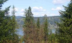 SELLER FINANCING ON THIS SECONDARY WATERFRONT LOT WITH COMMUNITY BEACH AND YOUR OWN BOAT SLIP, SOUTH END OF BEAUTIFUL LAKE COEURD'ALENE. NORTH IDAHO OFFERS ABUNDANCE OF FISHING LAKES, MOUNTAINS, HUNTING, WILDLIFE, BIKE TRAILS, HIKING AND SO MUCH MORE