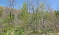 Ten plus acres for under $100,000 with a view of The Wall at Holiday Valley. Build your dream home right here . Great price! Owner will survey. Taxes are approximate. Final size of lot TBD. Listing originally posted at http